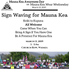march 13 sign waving flyer